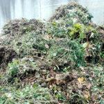 strauchschnitt, kompostieren, kompost, hochbeet,befüllen,kompost,komposterde,alternative